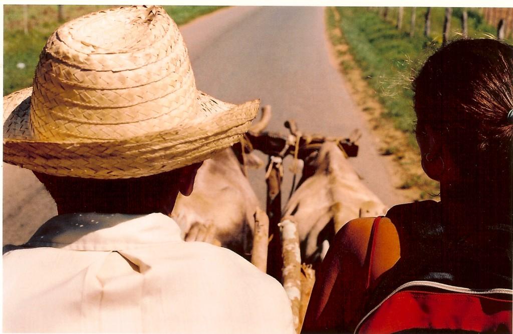 Carona em carro de boi